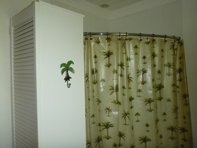 Master bath shower,